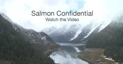 salmon-confidential-cover